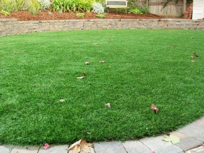 New lawn in Somerset