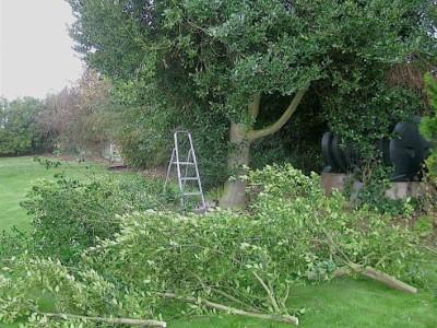Landscaping in Yeovil