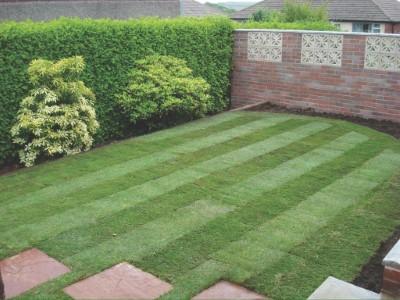 landscaping-taunton (1)